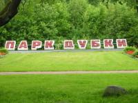 Dubki_park_Juhannus2016